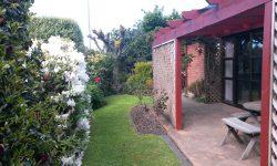 2 Garden_153638.jpg